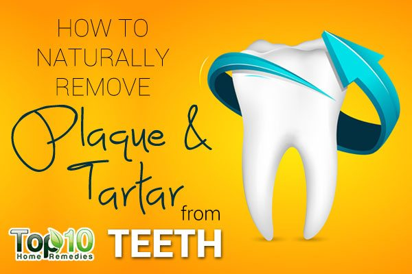 How to Naturally Remove Plaque and Tartar from Teeth | Top 10 Home ...