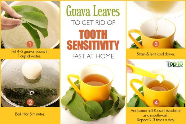 guava leaves for tooth sensitivity