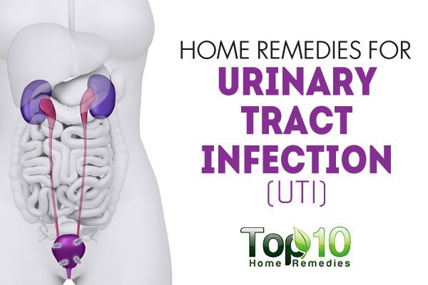 Home Remedies for Urinary Tract Infection (UTI) | Top 10 ...
