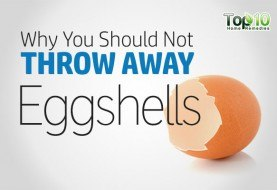 Here's Why You Should Not Throw Away Eggshells