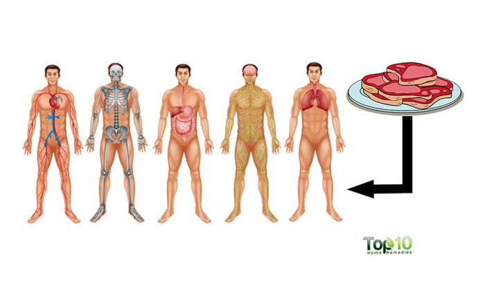 stop eating red meat lose weight