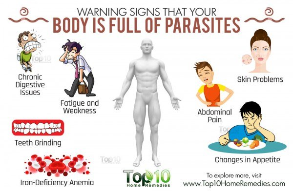 warning signs that you have parasites in body