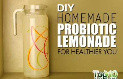 DIY Homemade Probiotic Lemonade for a Healthier You