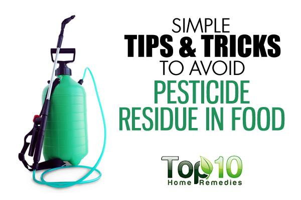Simple tips and tricks to avoid pesticide residue in food for Minimalist tips and tricks
