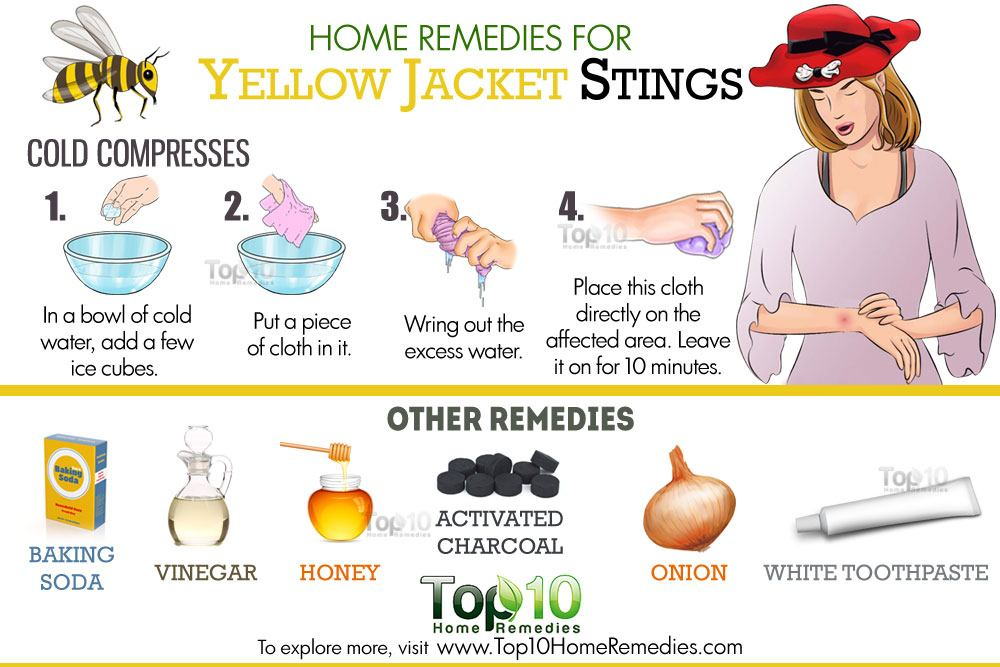 Home Remedies For Wasps Bite