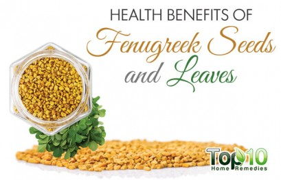 Top 10 Health Benefits of Fenugreek Seeds and Leaves