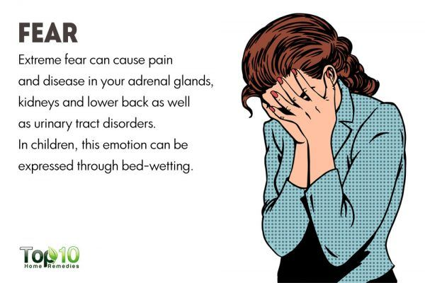 fear affects your kidneys