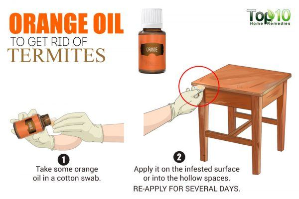 orange oil for termites