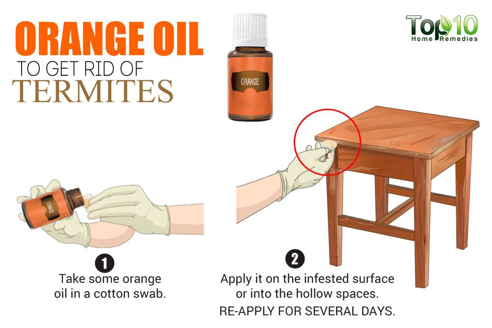 How to get rid of termites top 10 home remedies for Get rid of furniture
