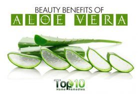 Top 10 Beauty Benefits of Aloe Vera