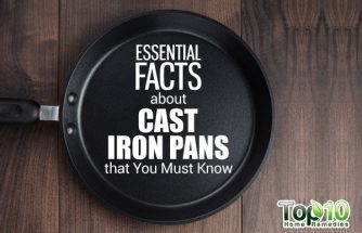 10 Essential Facts about Cast Iron Pans that You Must Know