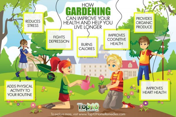 how gardening improves your health