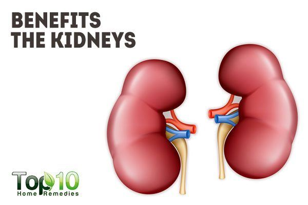 benefits the kidneys