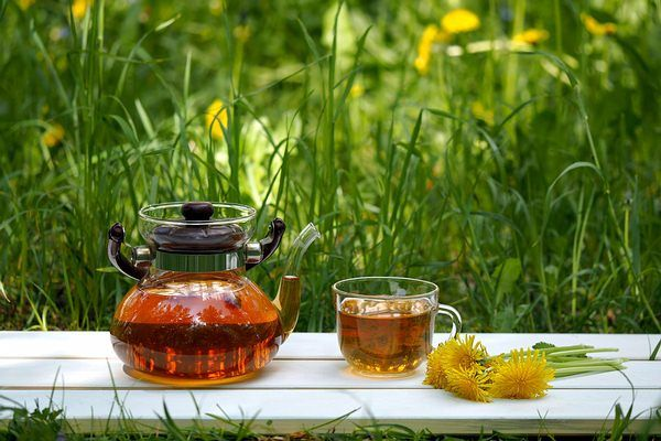 dandelion tea for digestion