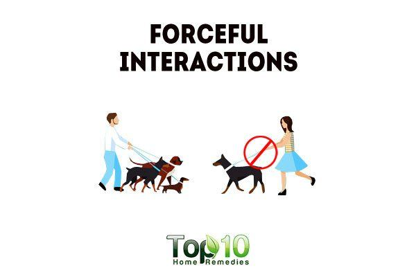 avoid forceful interactions