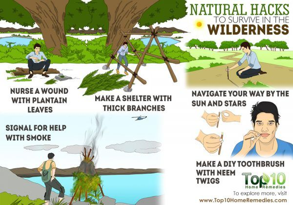 natural hacks for wilderness