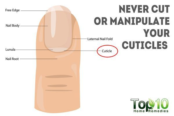 never cut cuticles or manipulate your nails