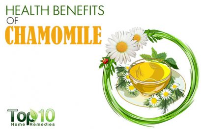 Top 10 Health Benefits of Chamomile