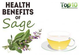 Top 10 Health Benefits of Sage