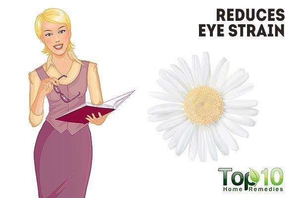 chamomile reduces eye strain
