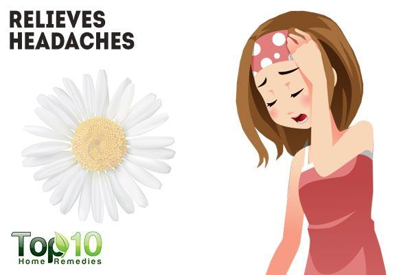 chamomile relieves headaches
