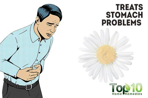 chamomile treats stomach problems