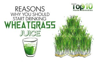 10 Reasons Why You Should Start Drinking Wheatgrass Juice