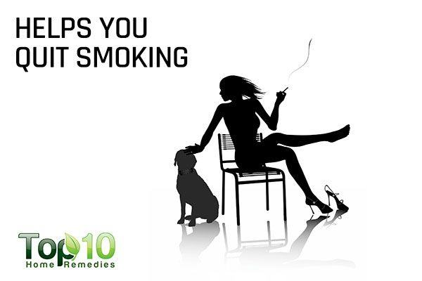 dogs help you quit smoking