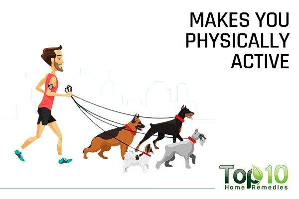 dogs make you physically fit