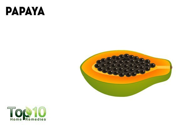 papaya for worms in dogs
