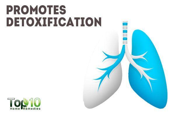 wheatgrass juice promotes detoxification