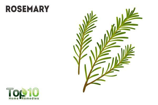 rosemary for aroma