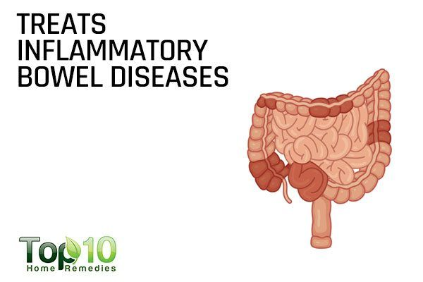 slippery elm for inflammatory bowel disease