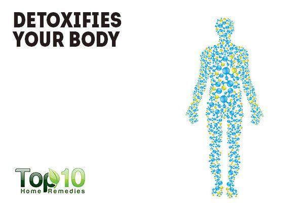 drinking warm water detoxies your body