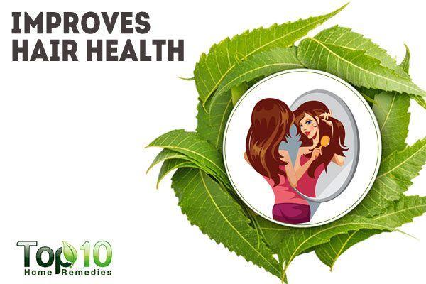 neem treats scalp infections