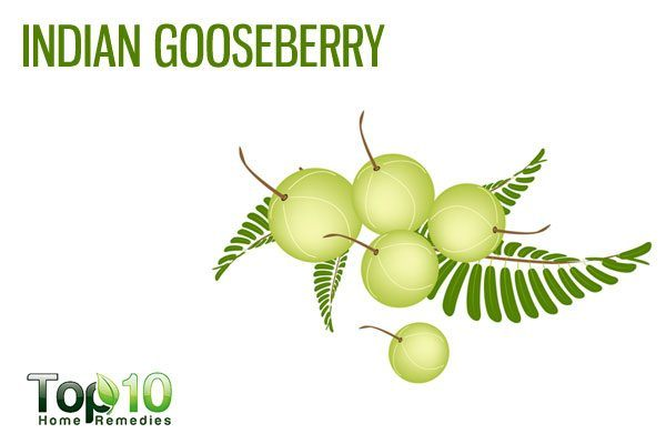 indian gosseberry