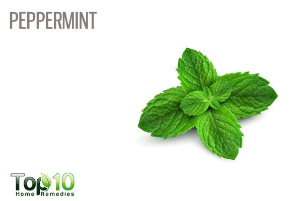peppermint for stuffy nose