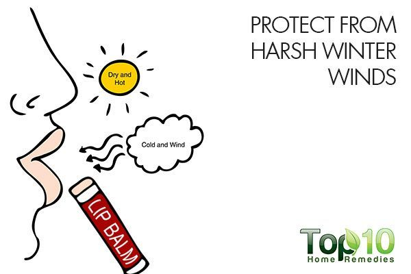protect your lips from harsh winter winds