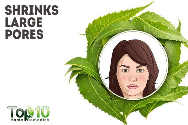 neem shrinks large pores