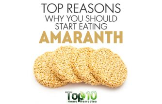 Top Reasons Why You Should Start Eating Amaranth