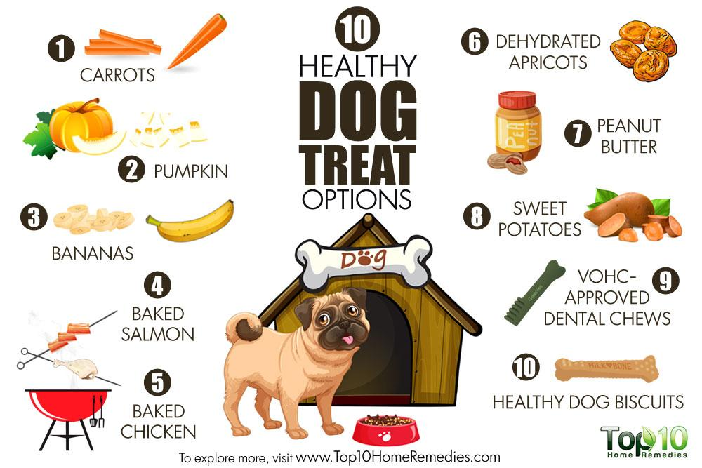 10 Healthy Dog Treat Options Top 10 Home Remedies