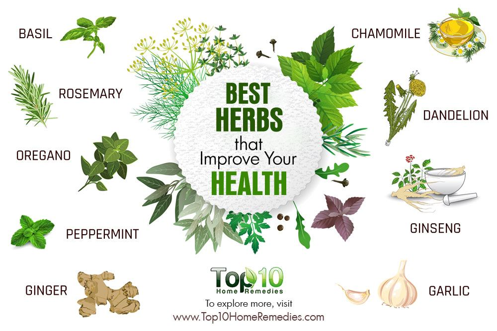 10 best herbs that improve your health top 10 home remedies for Top best images