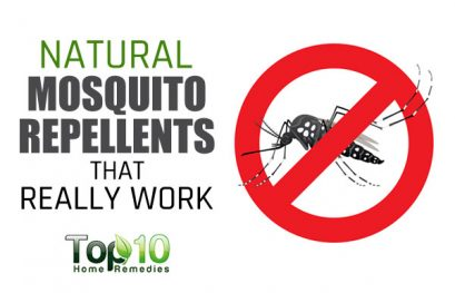 10 Natural Mosquito Repellents that Really Work