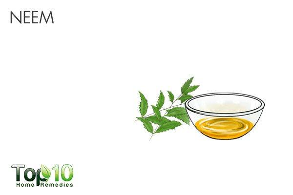 neem oil as natural mosquito repellent