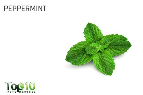 peppermint for health