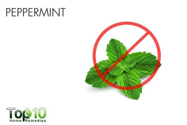 peppermint triggers acid reflux