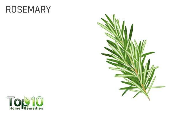 rosemary for health