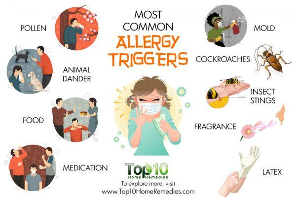 common allergy triggers