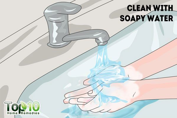 clean the bitten area with soapy water