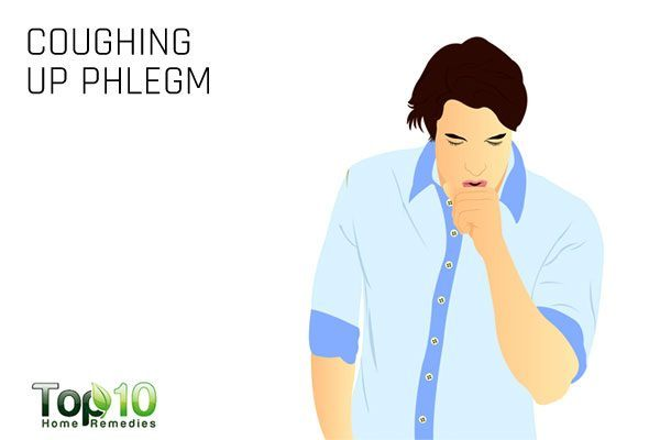 coughing up phlegm sign of sinus infection